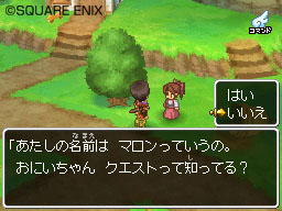 Dragon Quest IX Dqix02