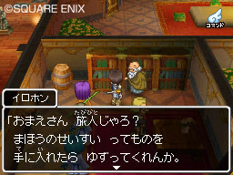 Dragon Quest IX Dqix06