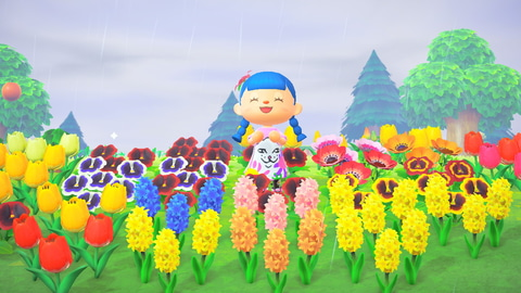 の 森 どうぶつ 花 あつまれ