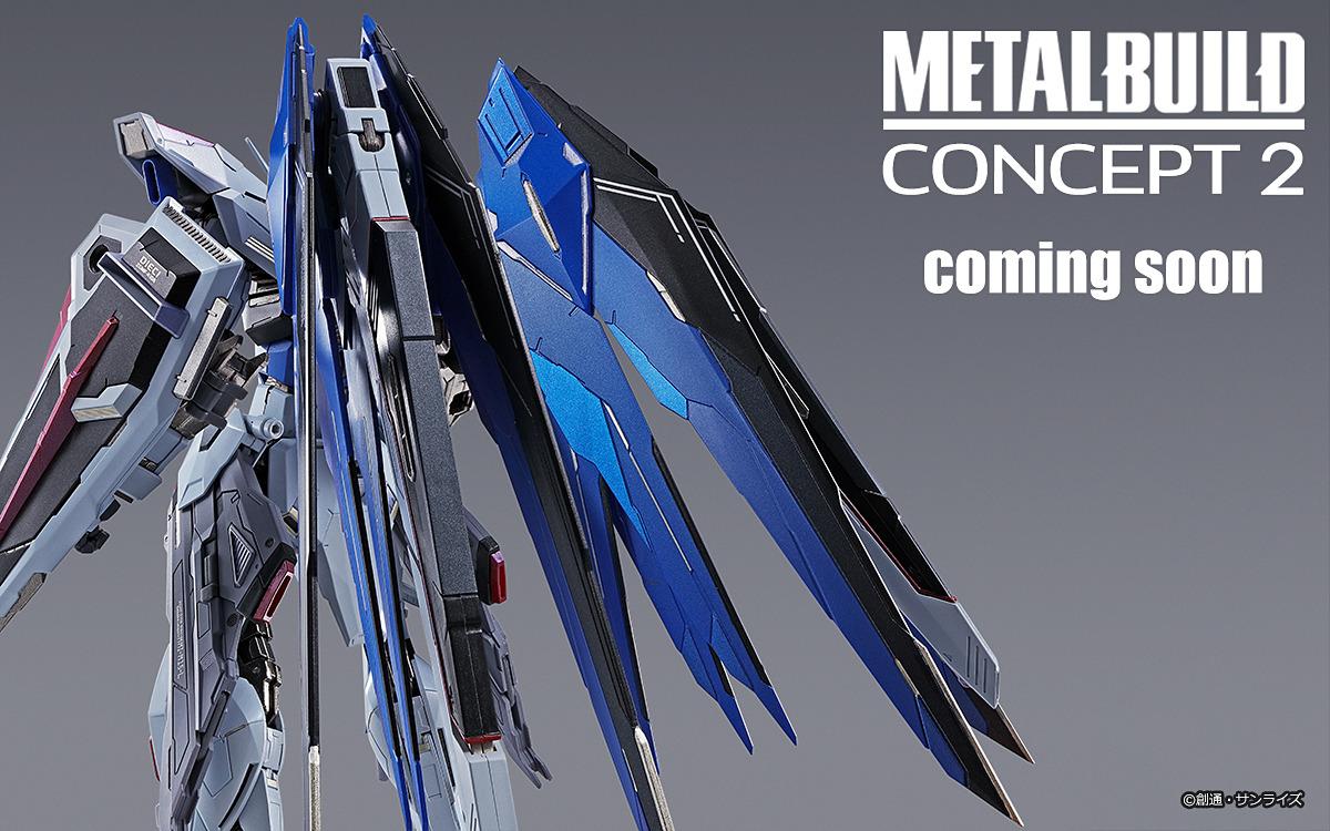 Concept2 フリーダム メタル ビルド